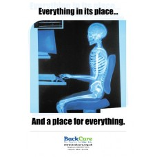 Everything in its place - A3 Skele Poster